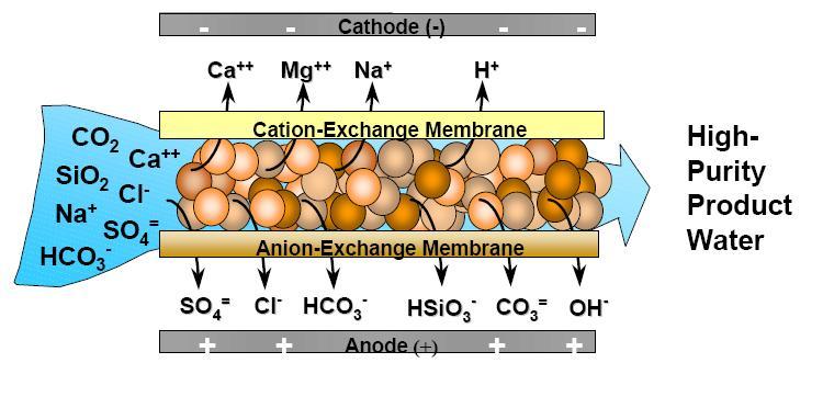 mbsm-dot-pro-mbsmpro--electrodesionisation-edi--eau-ne-conduit-pas-le-courant