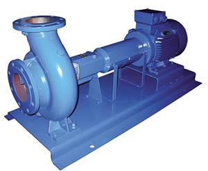 Ebara ENR 32-125 -100 Centrifugal Pump (ENR 32-125-100)