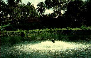 aeration lagoon oxygen injection