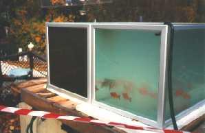 Ozonanwendung in einem Aquarium